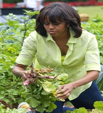 Michelle Obama Politics aside, you know her arms are powerful enough to strangle any foe. Plus, look, she can harvest these radish thingies!
