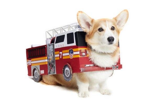 22_Harry_FDNY_firetruck_Corgi281