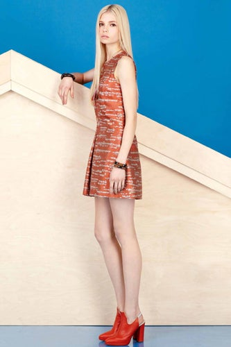 Alexander-Lewis-PreFall-2013-25