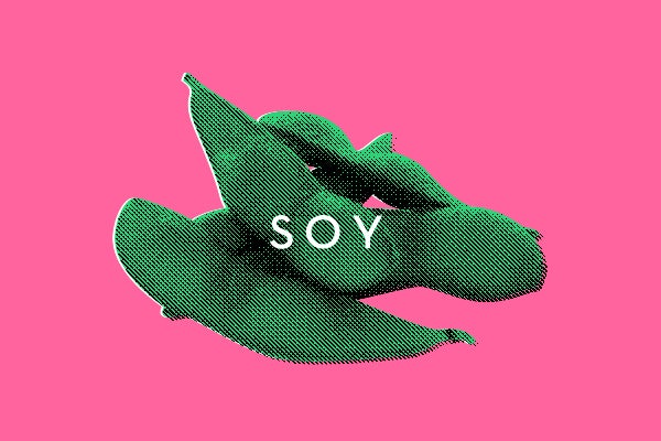 TheTruthAbout_Soy