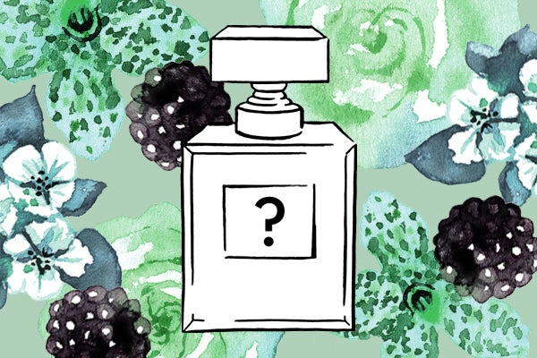Mystery Fragrance B